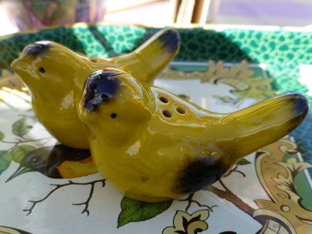 Cute birdie S&P!